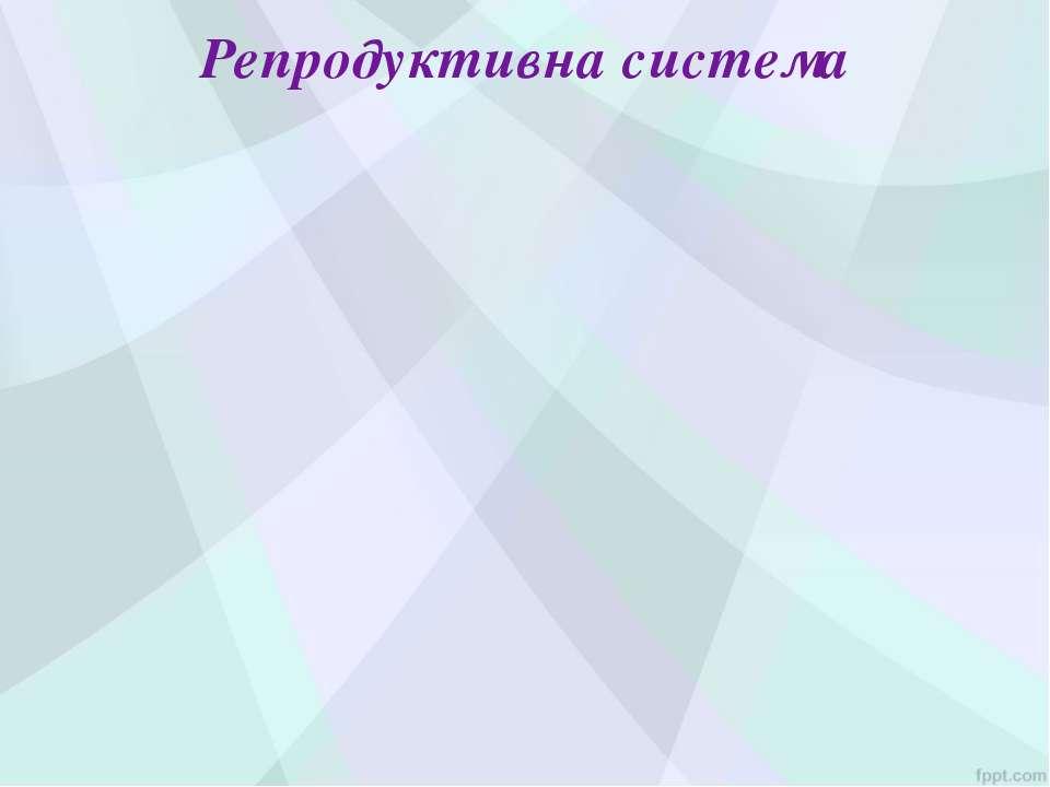 Репродуктивна система