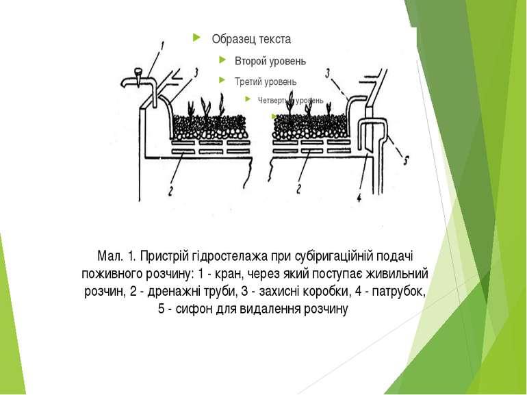 Мал. 1. Пристрій гідростелажа при субіригаційній подачі поживного розчину: 1 ...