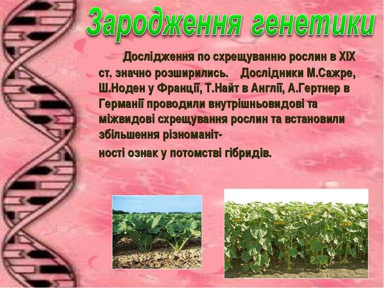Дослідження по схрещуванню рослин в ХІХ ст. значно розширились. Дослідники М....