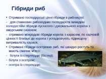 Отримано господарські цінні гібриди в рибництві: - для ставкових рибоводних г...