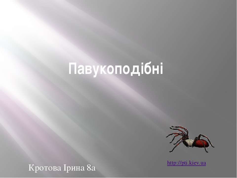 Павукоподібні Кротова Ірина 8а http://pti.kiev.ua
