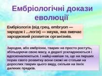 Ембріологічні докази еволюції Ембріологія (від грец. embryon — зародок і ......