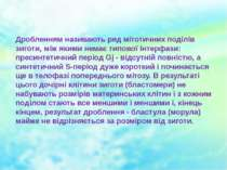 Дробленням називають ряд мітотичних поділів зиготи, між якими немає типової і...