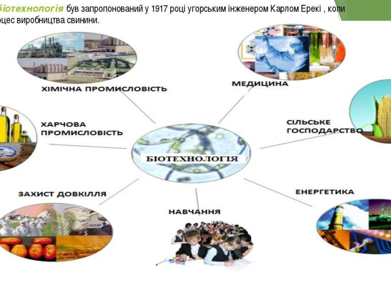 Вперше термін біотехнологія був запропонований у 1917 році угорським інженеро...