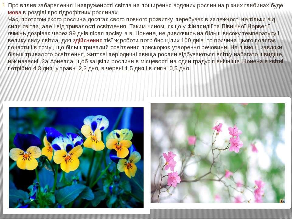 Про вплив забарвлення і напруженості світла на поширення водяних рослин на рі...