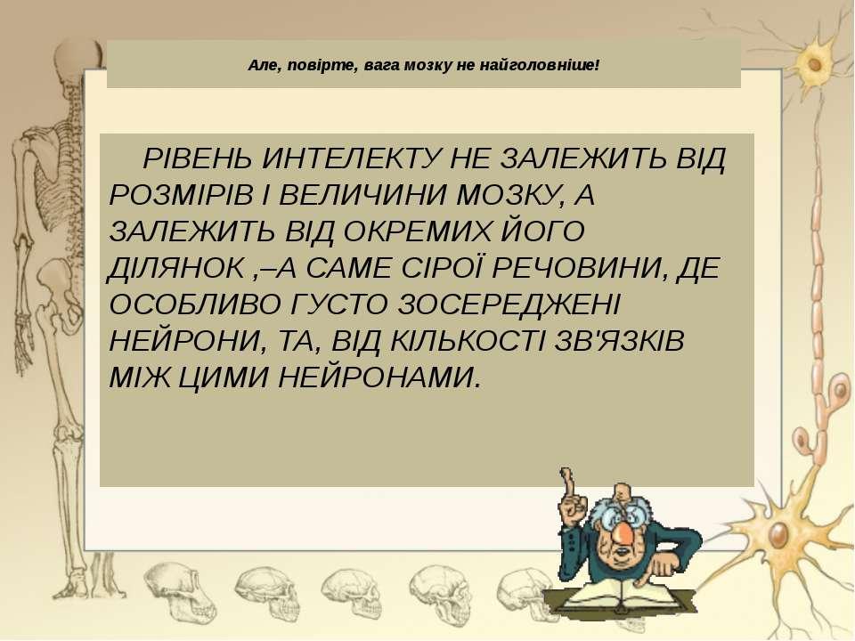 Мозочок Мозочок: 1 — кора (сіра речовина); 2 — провідні шляхи (біла речовина)...