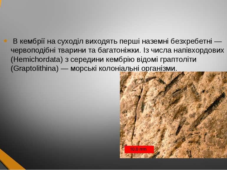 В кембрії на суходіл виходять перші наземні безхребетні — червоподібні тварин...