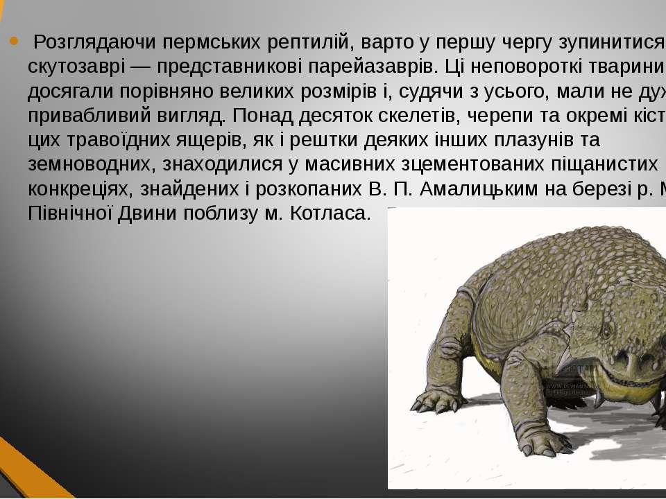 Розглядаючи пермських рептилій, варто у першу чергу зупинитися на скутозаврі ...