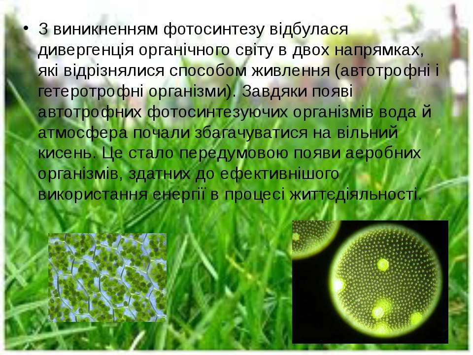 З виникненням фотосинтезу відбулася дивергенція органічного світу в двох напр...