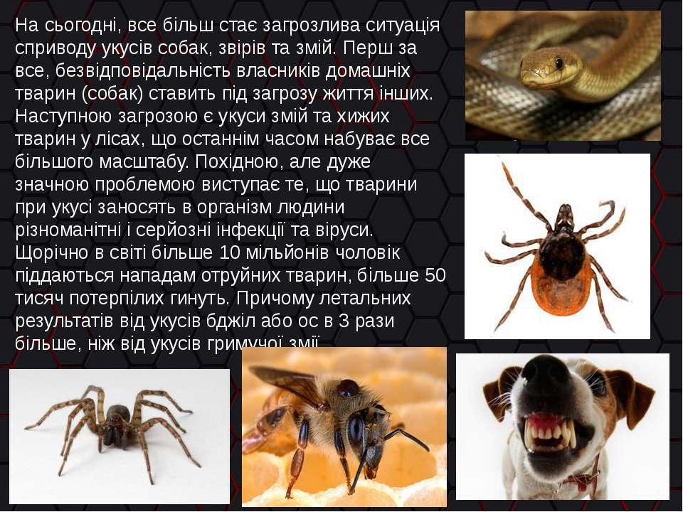 На сьогодні, все більш стає загрозлива ситуація сприводу укусів собак, звірів...