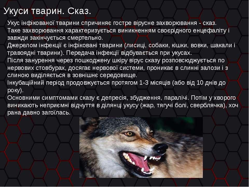 Укуси тварин. Сказ. Укус інфікованої тварини спричиняє гостре вірусне захворю...
