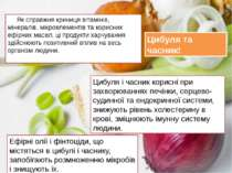 Як справжня криниця вітамінів, мінералів, мікроелементів та корисних ефірних ...