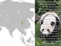 Загальна площа ареалу їхнього проживання біля 30 000 км², проте існує думка, ...