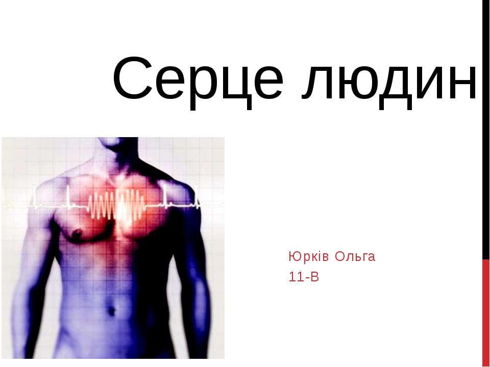 Серце людини Юрків Ольга 11-В