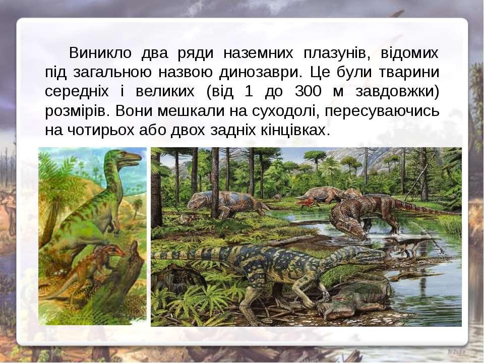 Виникло два ряди наземних плазунів, відомих під загальною назвою динозаври. Ц...