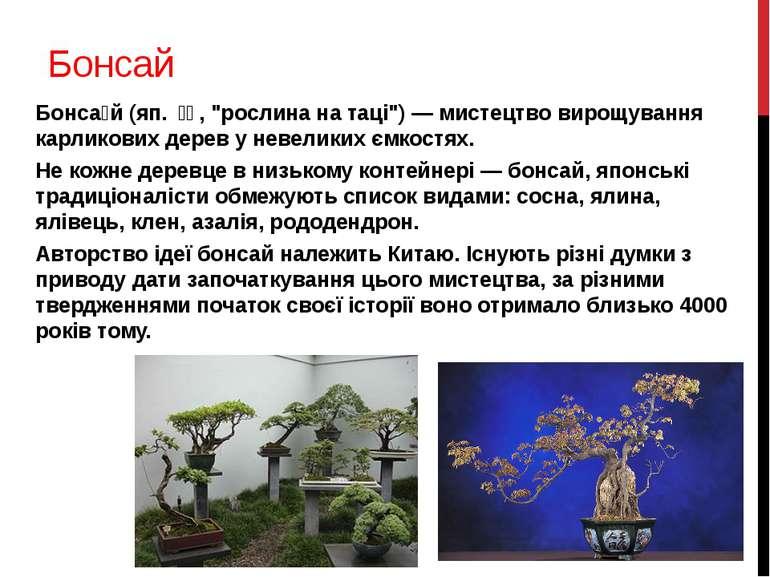 """Бонсай Бонса й (яп. 盆栽, """"рослина на таці"""") — мистецтво вирощування карликов..."""