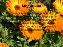 Медицина Якість і доступність медичних послуг – важливий чинник охорони здоро...