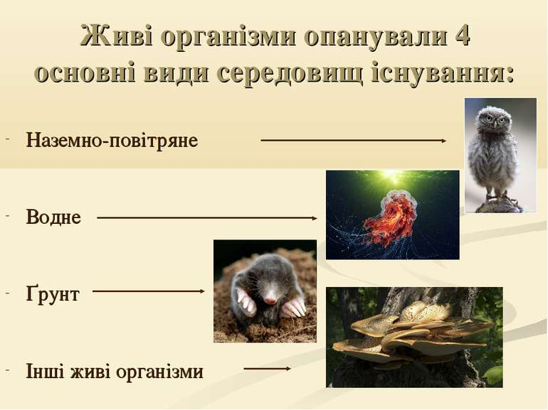 Живі організми опанували 4 основні види середовищ існування: Наземно-повітрян...