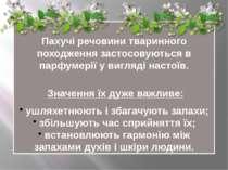 Пахучі речовини тваринного походження застосовуються в парфумерії у вигляді н...