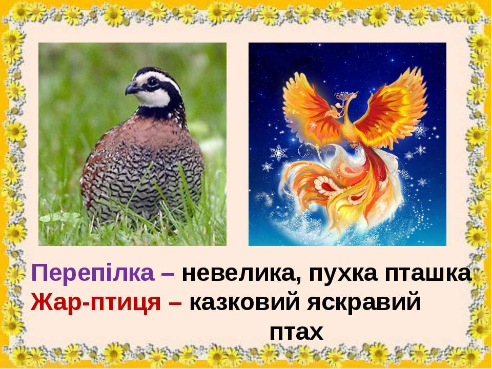 Перепілка – невелика, пухка пташка Жар-птиця – казковий яскравий птах
