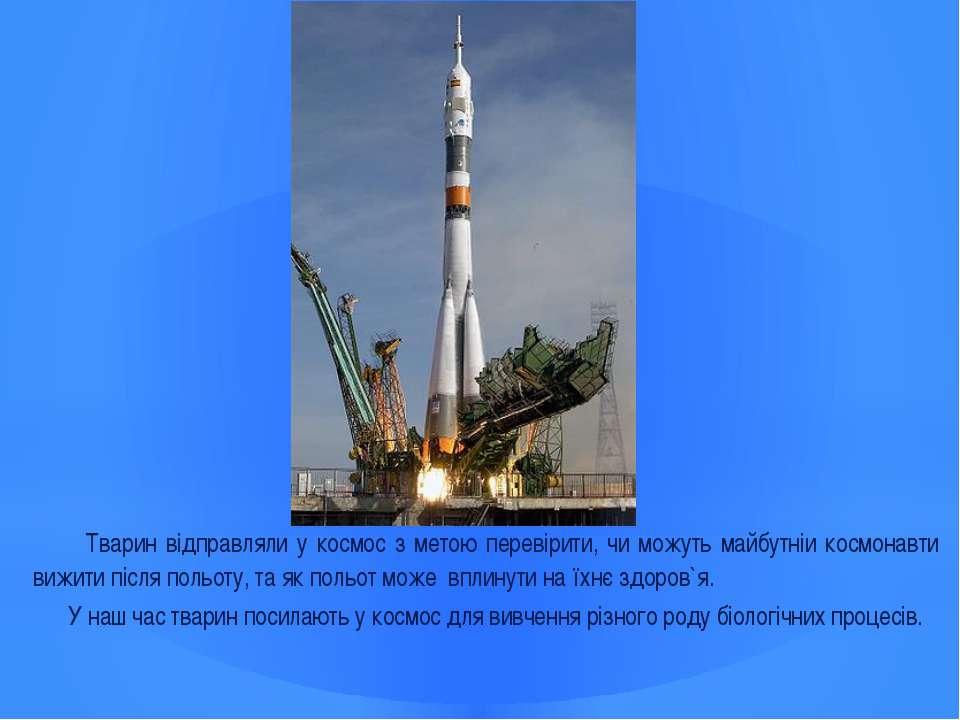 Тварин відправляли у космос з метою перевірити, чи можуть майбутніи космонавт...
