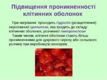 Підвищення проникненності клітинних оболонок При нагріванні проходить гідролі...