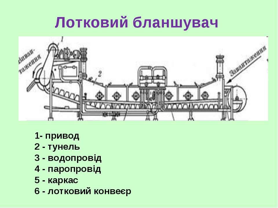 Лотковий бланшувач 1- привод 2 - тунель 3 - водопровід 4 - паропровід 5 - кар...
