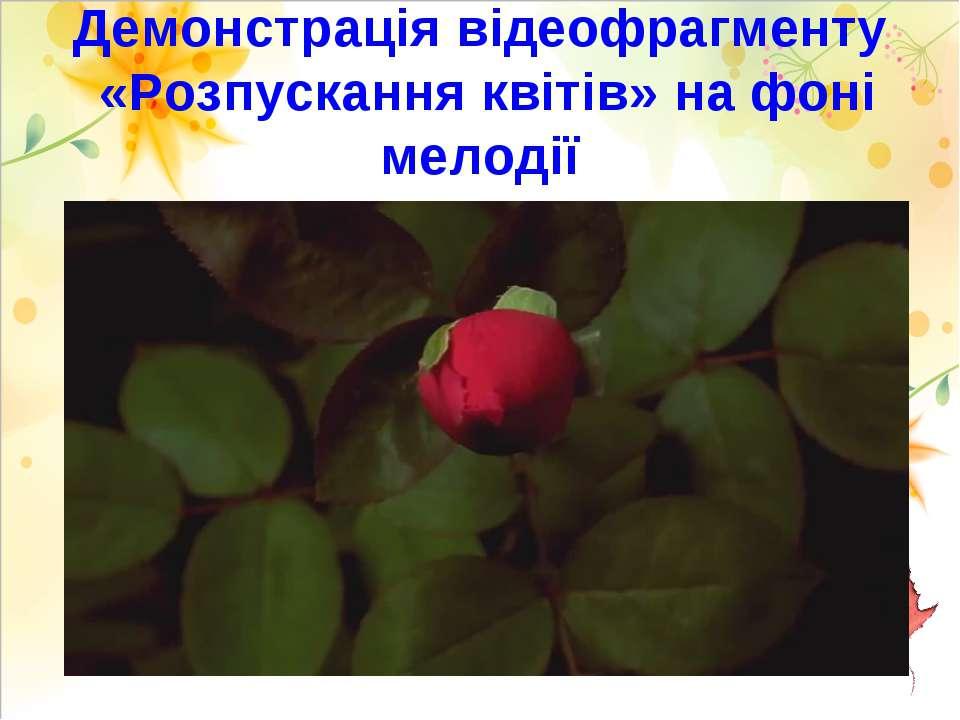 Демонстрація відеофрагменту «Розпускання квітів» на фоні мелодії