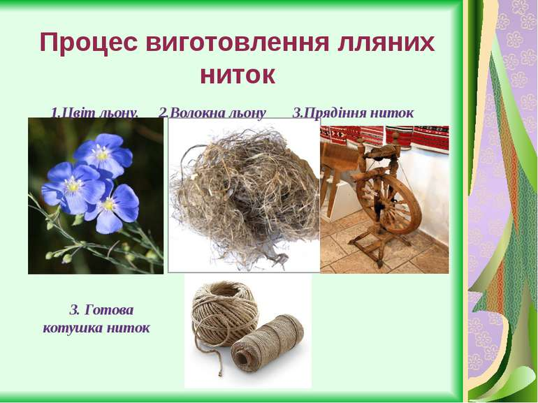 Процес виготовлення лляних ниток 1.Цвіт льону. 2.Волокна льону 3.Прядіння нит...