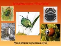 """Повідомлення """"біологів"""" Прототипи золотого жука"""
