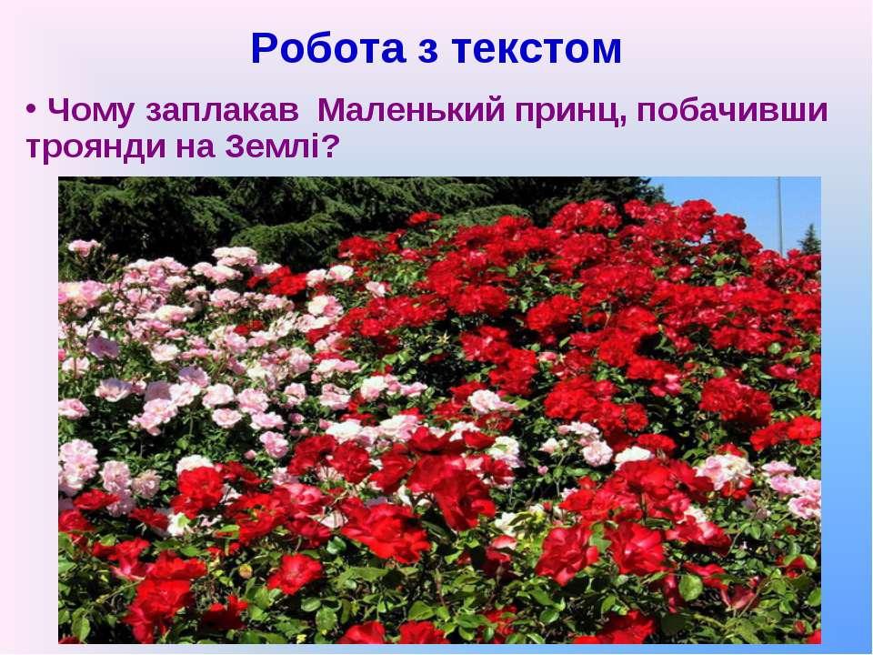 Робота з текстом Чому заплакав Маленький принц, побачивши троянди на Землі?