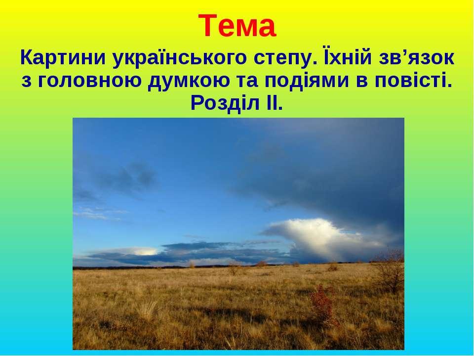 Тема Картини українського степу. Їхній зв'язок з головною думкою та подіями в...