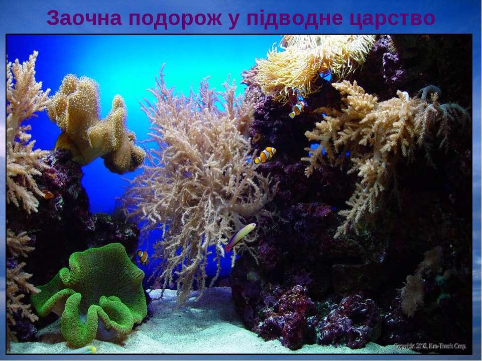 Заочна подорож у підводне царство