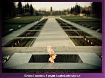 Вічний вогонь і ряди братських могил