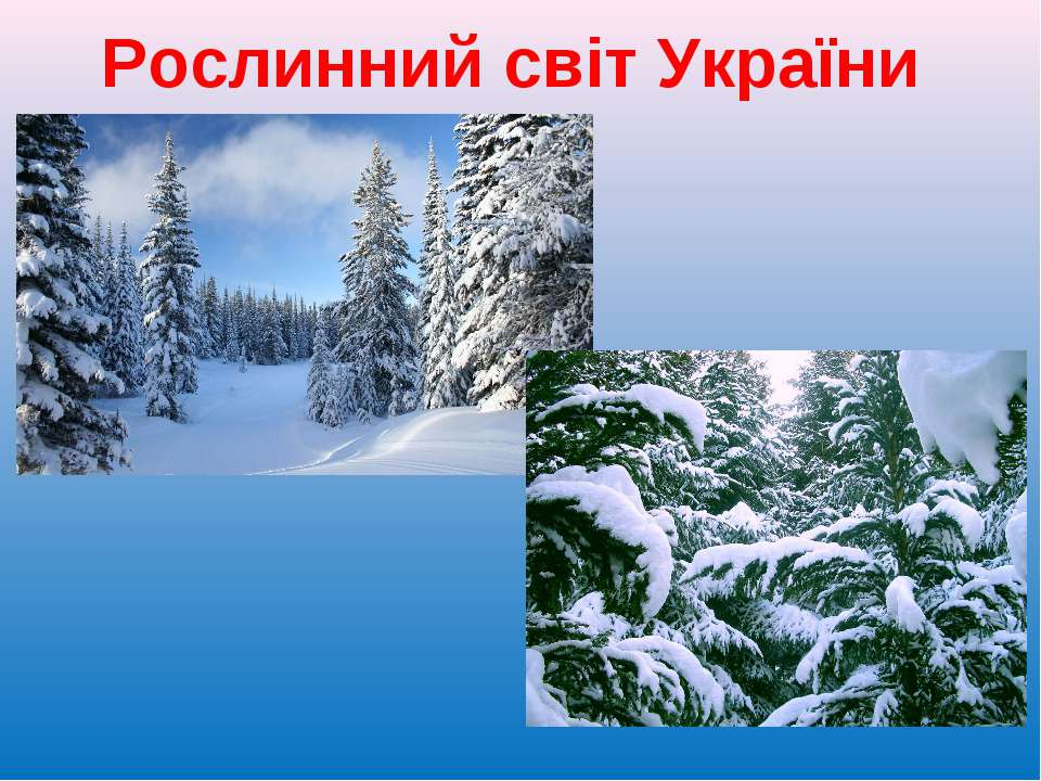 Рослинний світ України