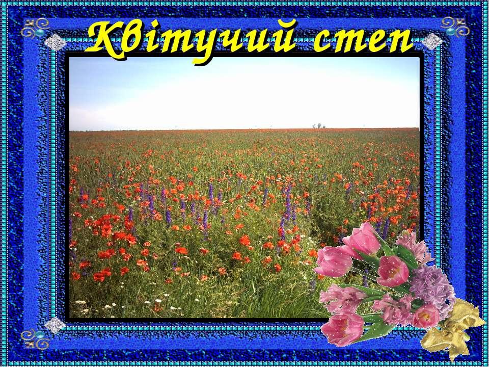 Квітучий степ