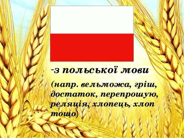 з польської мови з польської мови (напр. вельможа, гріш, достаток, перепрошую...