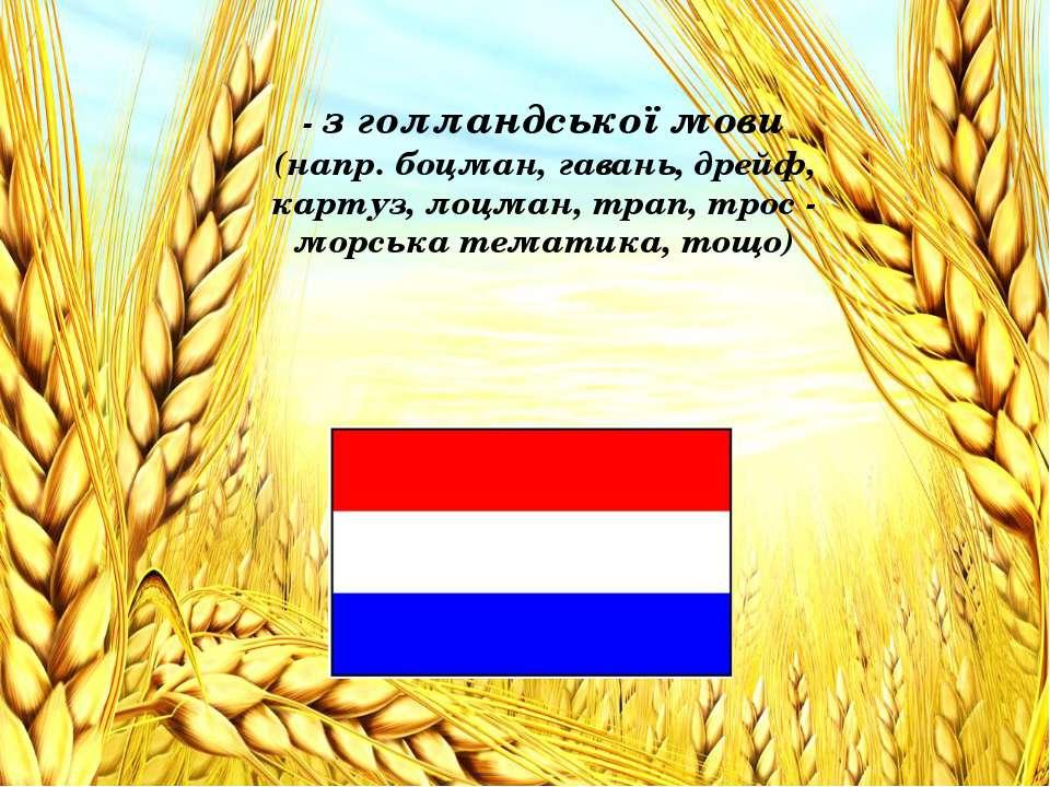 - з голландської мови (напр. боцман, гавань, дрейф, картуз, лоцман, трап, тро...