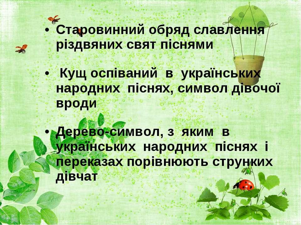 Старовинний обряд славлення різдвяних свят піснями Кущ оспіваний в українськ...