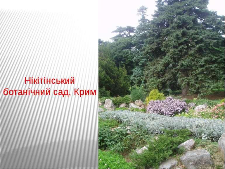 Нікітінський ботанічний сад, Крим