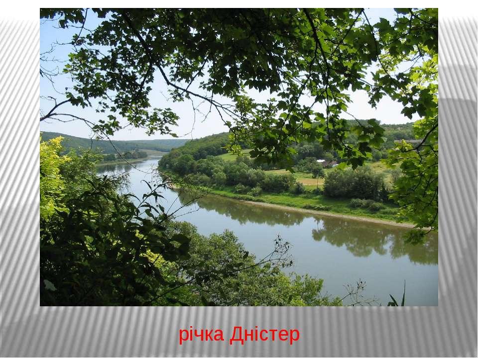 річка Дністер