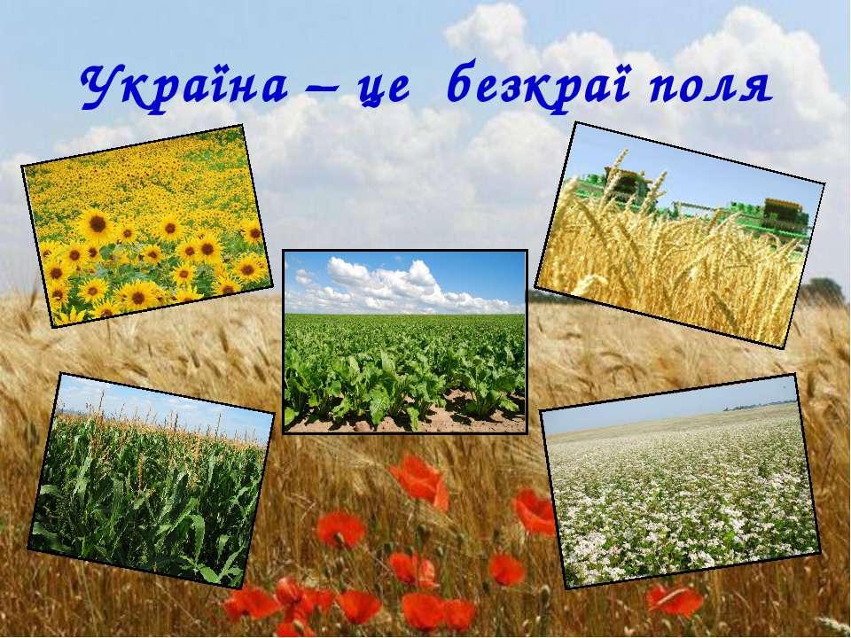 Україна – це безкраї поля