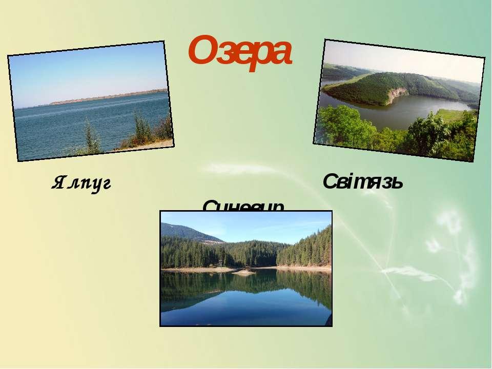 Озера Ялпуг Світязь Синевир
