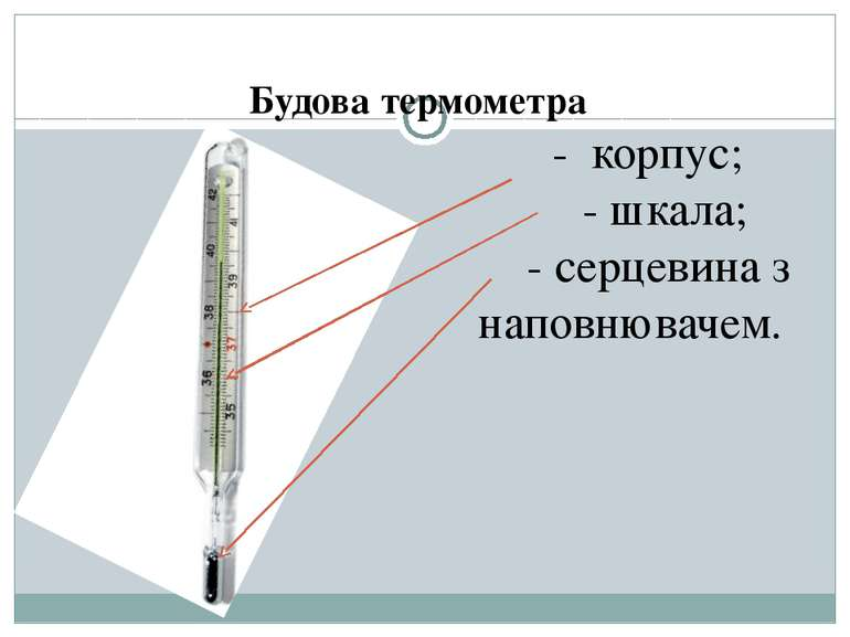 Будова термометра - корпус; - шкала; - серцевина з наповнювачем.