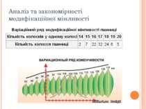 Аналіз та закономірності модифікаційної мінливості