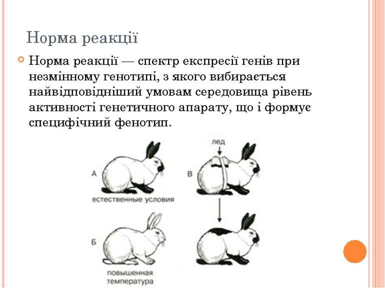 Норма реакції Норма реакції — спектр експресії генів при незмінному генотипі,...