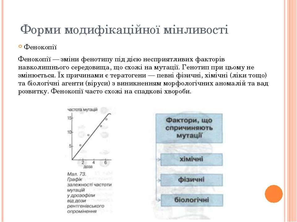 Форми модифікаційної мінливості Фенокопії Фенокопії — зміни фенотипу під дією...