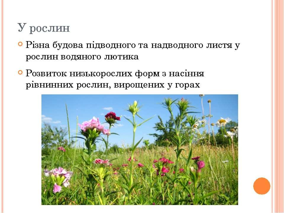 У рослин Різна будова підводного та надводного листя у рослин водяного лютика...
