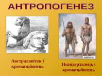 Австралопітек і кроманьйонець Неандерталець і кроманьйонець