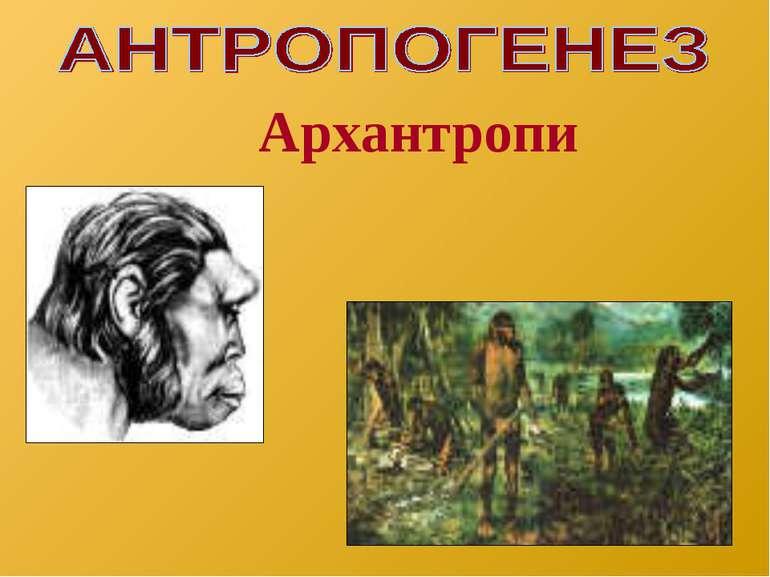 Архантропи